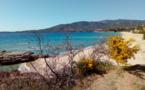 La météo de vendredi 29 mars en Corse