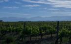 Les Vignerons de la Cave d'Aleria primés au concours agricole