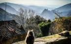 La météo de ce jeudi 18 avril en Corse