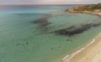 La photo du jour : La superbe plage de Bodri