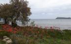 La photo du jour : l'îlot de la Giraglia