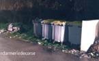 Afa : Mettre le feu à des conteneurs d'ordures ménagères n'est pas un jeu