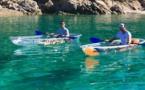 """""""Les raisons de notre retour ? La Corse nous manquait"""". Bougez Vert ! fait son come-back"""