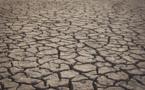 La Haute-Corse en vigilance sécheresse