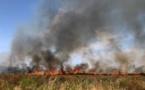 Calenzana : 15 hectares détruits par les flammes