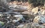 Sécheresse : Pas d'inquiétude immédiate, vigilance dans le Fium'Orbu et en Balagne