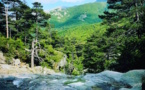 Météo : Le retour du soleil et de températures de saison cette semaine en Corse