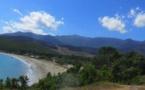 Plages du Cap Corse : Réunion de crise pour traiter l'impact de la tempête et l'afflux de posidonies