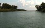 Pollution du fleuve Fium'Orbu : Une réunion de crise pour des solutions pérennes