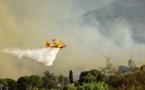Deux incendies importants à Erbajolu et Sant'Andréa di Bozziu