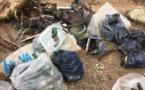 Porto-Vecchio : Ils se sont mobilisé pour nettoyer la planète