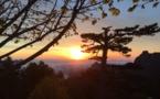 La photo du jour : Soleil levant sur Bavella