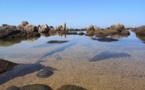 La photo du jour : Punta di a Castagna