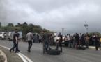 Contrôles de la PAC : les agriculteurs de Haute-Corse passent aux actes