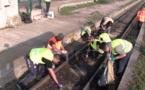 Furiani : opération de dépollution de part et d'autre de la voie ferrée
