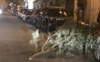 Vents violents en Haute-Corse : seulement quelques dégâts