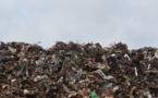 Crise des déchets : le PNC à coté du Collectif Valincu Lindu