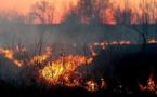 La vague de solidarité continue après l'incendie d'Olmeto