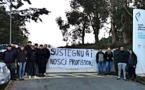 Lycées agricoles de Sartène et Borgo : les précisions de l'administration