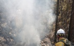 9 feux de végétation en Haute-Corse malgré l'interdiction des écobuages
