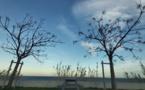 La météo du Vendredi 14 février 2020 en Corse