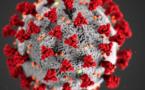 Coronavirus : 12 nouveaux cas en Corse ce jeudi. 164 patients positifs
