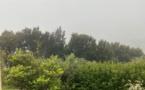 Pollution aux particules fines en Corse : au moins jusqu'à dimanche