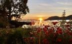 La photo du jour : Lever de soleil sur le golfe de Portivechju