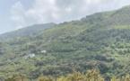 Corse : augmentation des particules fines en suspension