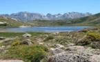 La photo du jour : Lac de Ninu, fleuron de la montagne corse
