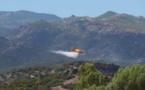 Incendie : 4 hectares détruits à Oletta