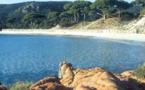 Corse : quatre endroits pour une belle escapade