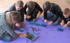 Les Petits Débrouillards en Corse, c'est fini