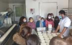 Les élèves d'Oletta à la découverte de l'élevage ovin et caprin