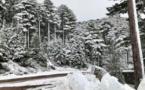 La météo du samedi 23 janvier 2021 en Corse