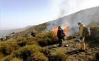Feux de forêts : on va brûler en Balagne pour les scientifiques du projet GOLIAT