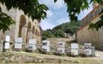 La Maison de l'Architecture de Corse à la rencontre des habitants de l'Île