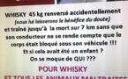 Après la mort de Whisky : Rassemblements à Ajaccio et Bastia