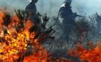 Pression incendiaire dans le Lancone : Après Oletta, Biguglia ?