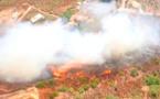 15 hectares parcourus par un incendie à Peri
