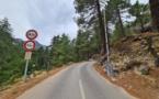Restonica, voyage au cœur du joyau du Centre Corse