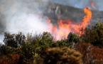 Sotta : Un incendie détruit 5 hectares