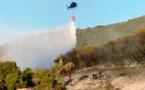 Un incendie détruit deux hectares de maquis et chênes à Cuttoli