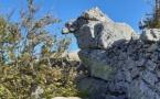 La photo du jour : Sur les crêtes du val d'Ese.... un homme vous regarde