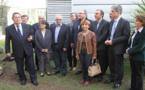Un olivier pour les 25 ans d'Air Corsica