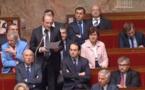 L'énergie et le développement durable de la Corse en question à l'Assemblée Nationale