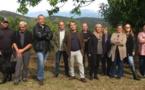 Cynips : Une nouvelle donation de la Brasserie Pietra pour sauver la châtaigneraie corse