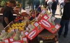 Le coup de colère des agriculteurs contre les vendeurs ambulants de fruits et légumes italiens