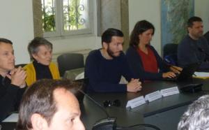 Xylella fastidiosa en Corse : Une lutte de tous les instants