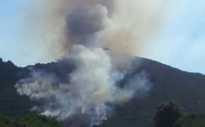 Un incendie détruit près de 12 hectares à Tattone